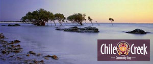 Chile Creek