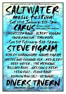 2015 Salt Water Music Festival