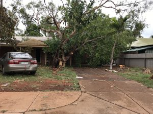 Tree smashes into car port, Chippindall Place, Broome