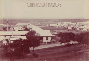 Chinatown in the 1920's